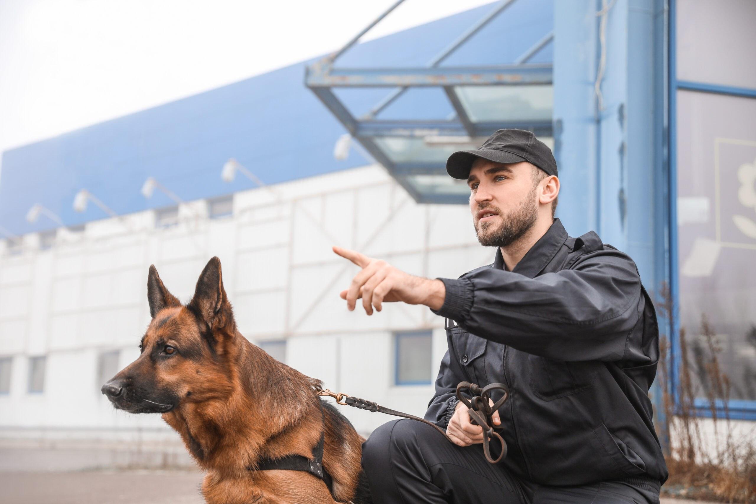 Wachmann, Wachschutz, Doorman, Türsteher, Security, Sicherheitsdienst, Agentur für Sicherheit und Brandschutz, Bergheim